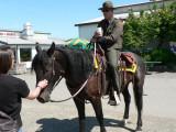 Border Patrol on Mustang