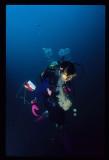 1997 Redang workshop - Mermaid