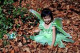 Pixie (Tinker Bell) in the Maple leaves