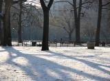 January 2007 Gardens