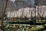 Financial Center Gardens