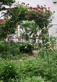 Garden View - Don Juan Rose Arbor