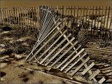 Beach fences ...