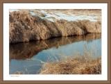Token Creek #2