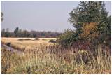 Cherokee Marsh - Early 1990's