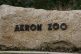 More Zoo - Akron