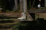 Debi's Photos at the Hunting Camp