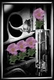 guns 'n 'roses