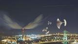 Flying Ulus