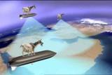 goats-on-board.jpg