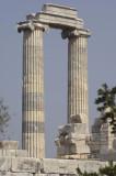 Didyma 2007 4389.jpg