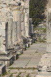 Didyma 2007 4391.jpg