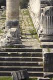 Didyma 2007 4398.jpg