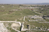 Miletus 2007 4538.jpg