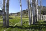 Labranda view 5596.jpg