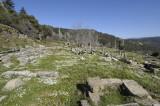Labranda Temple of Zeus 5625.jpg