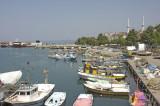 Akcakoca062007 7858.jpg