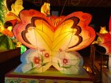 lanterne at buddha birthday