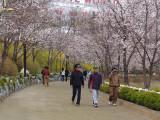 Around Seokcho lake