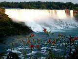 Ann's Photo Gallery - Niagara Falls