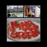 nina_brian_album