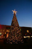 Christmas tree at The Woodlands Mall