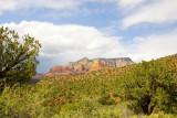 Lush Desert Mountain, Sedona, AZ