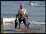 Collecting the tuna catch
