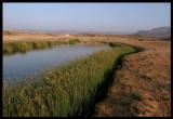 Khawr Rawri  near Salalah