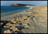 Coastline near Salalah