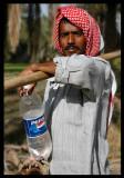 Young farm worker - Al Jahra