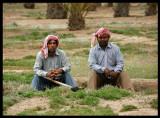 Abdali Farm workers