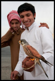 Young boys often start falconry with Kestrels