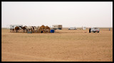 Bedouines near western Iraqi border