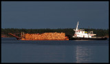Timber transport on Baltic Sea - Oxölösund 2005