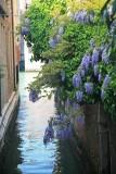 Venice 164