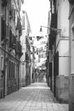 Venice 216