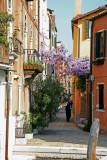 Venice 240