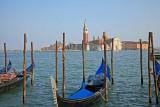 Venice 267