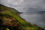 ring_of_kerry_