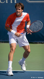Tommy Haas, 2006