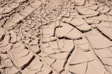 It was hot, but even the dried mud in the stream bed was fascinating