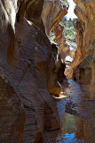 Slot Canyon in Grand Staircase-Escalante National Monument
