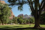 More Zion Lodge lawn