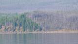 zP1010706 Wildfire 2003 boundary thru haze of 2007 wildfires.jpg
