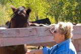 zP1010817 Dora meets one of the horses.jpg