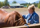 zP1010822 Dora brushes horse she will ride.jpg