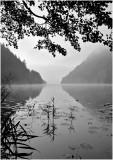 lake 8.jpg