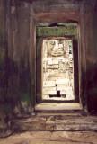 looking through the doorway