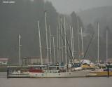 Sail Boat Old.jpg